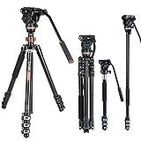 Kit monopiede treppiede video professionale, Cayer AF2451 Cavalletto treppiede telescopico in alluminio 67 pollici con del fluido H4 e base del treppiede rimovibile per fotocamere e videocamere DSLR