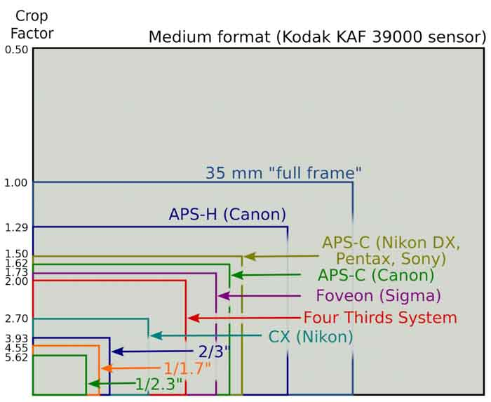Come scegliere una macchina fotografica reflex dimensione sensori