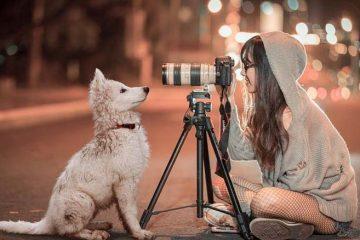 cavalletto fotografico