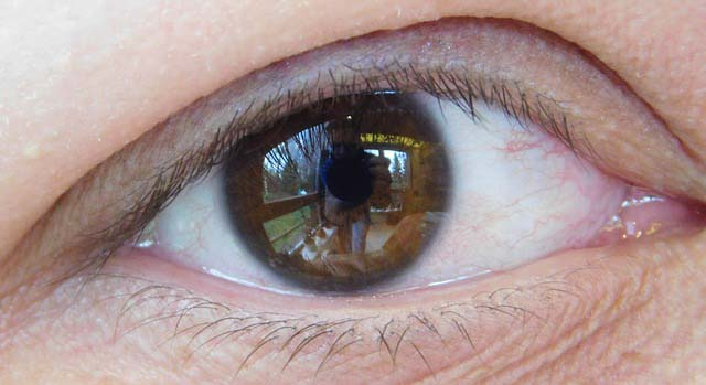 parti dell'occhio e macchina fotografica