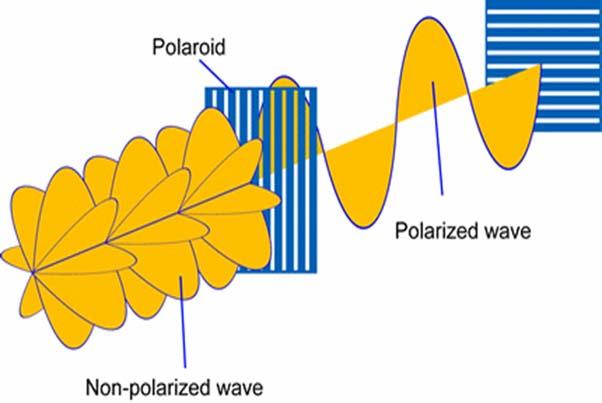 come funziona filtro polarizzatore