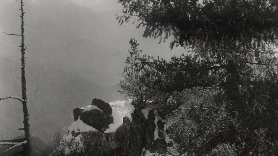 fotografi famosi paesaggi Edward Weston