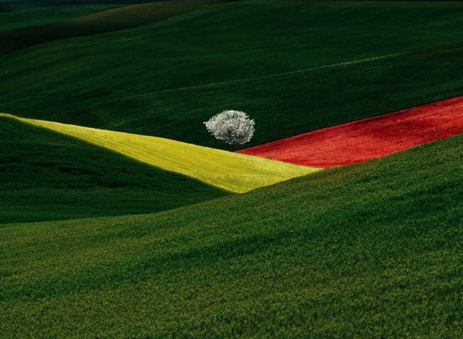 franco fontana fotografo colori