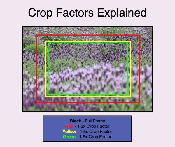 Inquadrature fotografiche crop