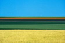 Franco Fontana: il fotografo che ha unito la fotografia alla pittura