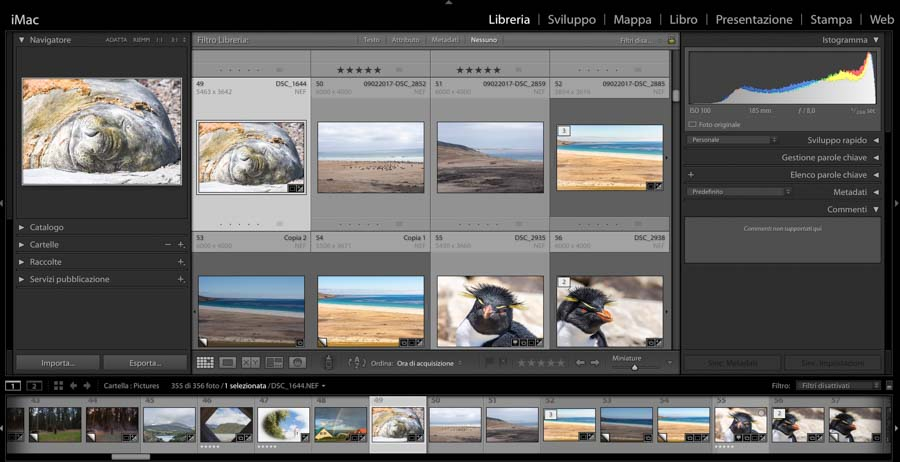 interfaccia lightroom libreria
