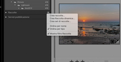 catalogazione raccolte Lightroom