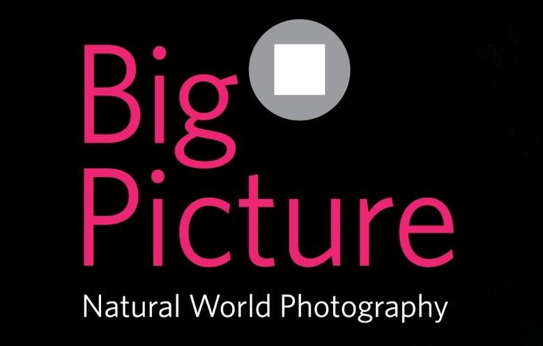 concorsi fotografici natura